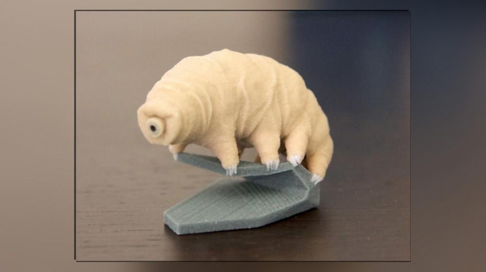 3D-tulostettu karhukainen